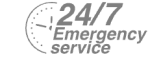 24/7 Emergency Service Pest Control in Ashford, TW15. Call Now! 020 8166 9746